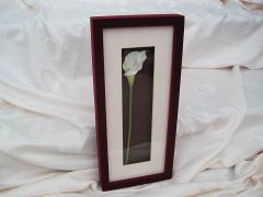 burgandy-flocked-frame_1267380524